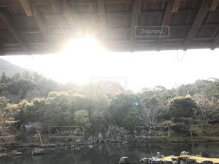 空,太陽,水面,池,山,光,樹木,庭園