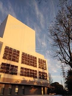 夕陽に照らされた建物の写真・画像素材[2906392]