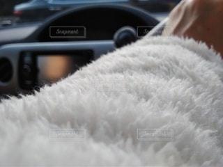 モコモコフリース着て、運転の写真・画像素材[2941753]