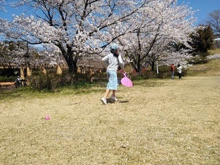 公園で遊んでいる少女の写真・画像素材[3076771]