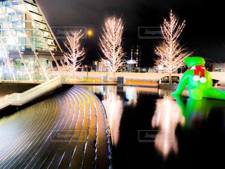 風景,夜景,大阪,幻想的,街,樹木,イルミネーション,都会,梅田,大阪駅,アンバサダー,出かける,グランフロント大阪,シャンパンゴールド