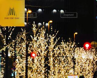 風景,夜,屋外,街,イルミネーション,都会,照明,ロマンチック,梅田,大阪駅,夜の街,アンバサダー,グランフロント大阪,ウメキタ,シャンパンゴールド