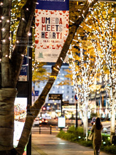 女性,冬,屋外,樹木,イルミネーション,都会,クリスマス,ロマンチック,梅田,通り,LED,グランフロント大阪,シャンパンゴールドイルミネーション,グランフロントクリスマス