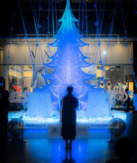 女性,冬,夜,イルミネーション,人,後姿,クリスマス,ロマンチック,祈り,梅田,LED,ステージ,グランフロント大阪,クリスマス ツリー,グランフロントクリスマス