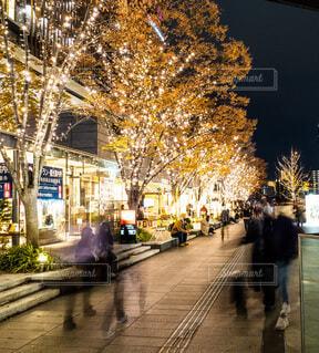 恋人,夜,イルミネーション,都会,道,クリスマス,通り,グランフロント大阪,街路灯,シャンパンゴールド