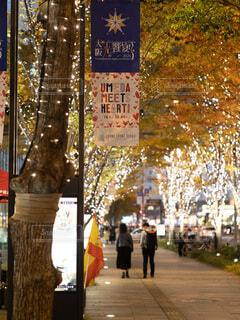 恋人,夜,イルミネーション,都会,道,高層ビル,クリスマス,通り,グランフロント大阪,シャンパンゴールド,グランフロントクリスマス