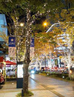建物,夜,屋外,樹木,イルミネーション,都会,道,高層ビル,クリスマス,明るい,通り,グランフロント大阪,街路灯,シャンパンゴールド,クリスマス ツリー,グランフロントクリスマス