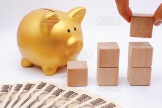 手持ち,人物,ポートレート,暮らし,豚,お金,ライフスタイル,金融,小銭,貯金箱,手元,硬貨,現金,お札,紙幣,富,貧困,貯金,節約,豚の貯金箱,投資,貧乏,へそくり,倹約,上昇,家計,家計簿,増加,貯蓄,資産,収入,資産運用,給料,やりくり,費用,給与,増える,金儲け,所得,小遣い,貯める,積み立て,金の豚,積立,手取り,つみたて,高所得,固定費,金の豚の貯金箱,増益,増収,紙幣1万円札