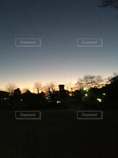 空,太陽,夕暮れ,光,樹木