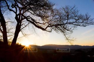 空,木,太陽,夕暮れ,山,光,樹木,日の入り
