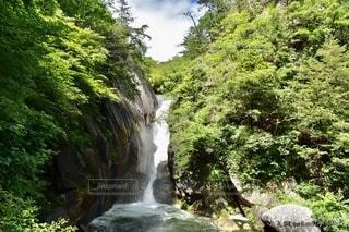 森の中の大きな滝の写真・画像素材[3351587]