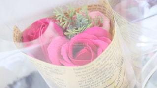 薔薇の写真・画像素材[2962643]