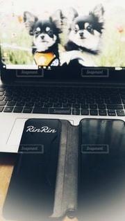 パソコンとスマートフォンの写真・画像素材[2964215]
