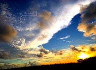 自然,空,太陽,景色,光