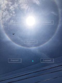 自然,空,鳥,屋外,太陽,雲,綺麗,虹,レインボー,光,日暈,ハロ,天気,鳶,レア,珍しい,暈,幸運,気象,光の輪,光学現象,虹の輪,ヘイロー