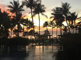 空,太陽,ビーチ,プール,夕暮れ,海岸,光,ヤシの木,グアム,南の島