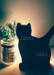 このネコは『しゃもじ入れ』シッポの部分は『しゃもじ』の写真・画像素材[2924332]