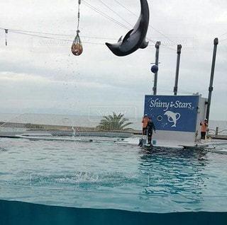 水の体の中で泳ぐ人々のグループの写真・画像素材[2989574]