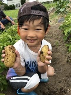 食べ物,夏,屋外,子供,手持ち,野菜,人物,人,幼児,ポートレート,手作り,家庭菜園,畑,芋,5歳,ライフスタイル,手元,手伝い,いも,じゃがいも