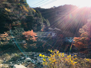 自然,空,秋,紅葉,太陽,光,紅葉狩り,鏡野町,奥津渓
