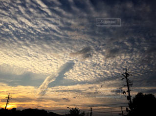 空,春,夕日,屋外,太陽,雲,夕暮れ,光,夕陽,うろこ雲,クラウド,ひつじ雲,いわし曇