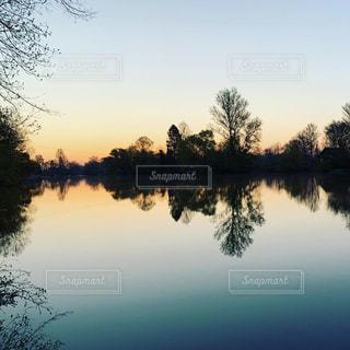 空,湖,太陽,水面,反射,光,樹木,日の出