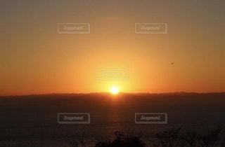 自然,海,空,鳥,太陽,朝日,山,オレンジ,光,風,澄んだ空