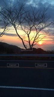 自然,風景,空,太陽,夕暮れ,道路,山,光,樹木