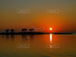 空,屋外,太陽,赤,ビーチ,夕暮れ,水面,光,サンセット