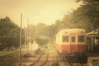 森の近くの列車の線路を走行する列車の写真・画像素材[2915995]