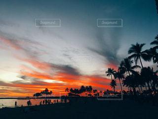 自然,風景,空,太陽,雲,夕焼け,夕暮れ,光,浜辺,旅行,ヤシの木