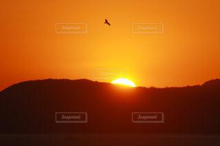 自然,空,鳥,太陽,雲,光,日の出,初日の出