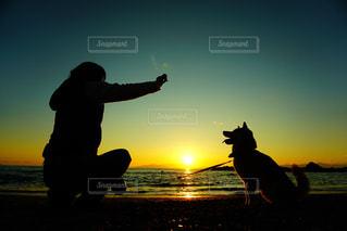 沈む夕日に照らされての写真・画像素材[2896168]