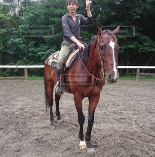 馬に乗っている男の写真・画像素材[2914416]