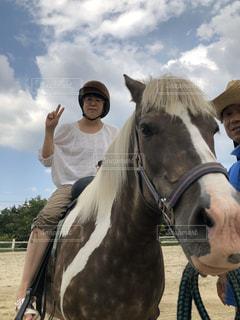馬の前に立っている人のカップルの写真・画像素材[2914418]