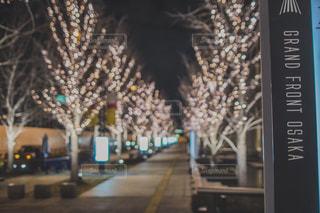 イルミネーション,グランフロント大阪