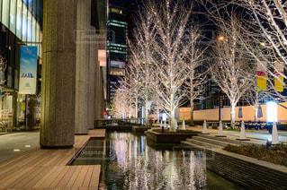 屋外,水面,樹木,高層ビル,けやき並木,グランフロント大阪