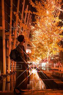女性,風景,イルミネーション,人,クリスマス,リース,装飾,ポートレート,グランフロント,飾り,並木通り,クリスマス ツリー,Grand Wish Christmas 2020