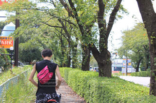木の隣の通りを歩いている人の写真・画像素材[2906691]