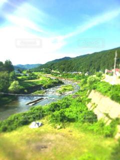 夏休みの写真・画像素材[2906690]