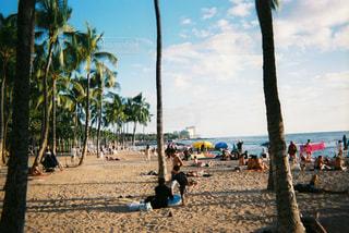 ワイキキビーチの写真・画像素材[2906713]
