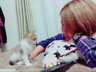 女性,子ども,猫,動物,かわいい,ペット,子猫,人物,人,癒し,若い,キュート,飼い猫,ネコ