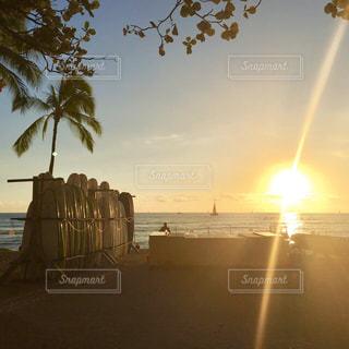 ヤシと夕陽とサーフボードの写真・画像素材[2911976]
