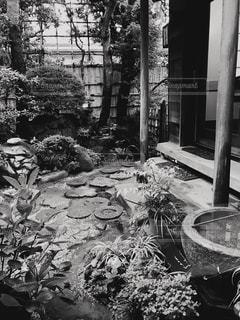 モノクロ庭先の写真・画像素材[2912708]
