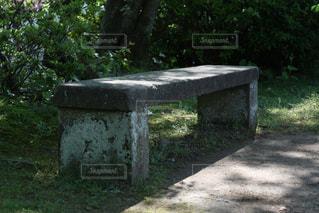 石のベンチの写真・画像素材[2918143]