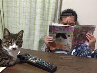男性,猫,動物,屋内,カーテン,本,ねこ,ペット,人物,座る,ネコ