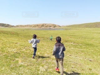 草原を走る子どもの写真・画像素材[2981944]
