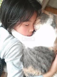 猫と娘の写真・画像素材[3026190]