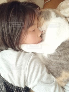 猫を抱いている人の写真・画像素材[3102226]