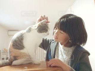 娘と猫の写真・画像素材[3375350]